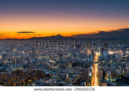 The sun sets over the sprawling cityscape of Tokyo, with Mount Fuji in the far distance. - stock photo