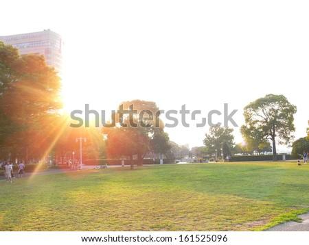 The sun shining on a city park. - stock photo