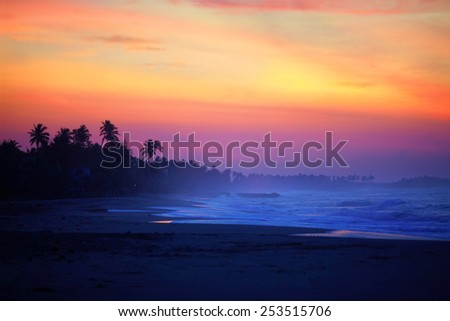 The sun will soon rise above the tropical island still shrouded in twilight. Sea breeze blows blue mist between black silhouettes of palm trees on the beach.