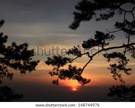 The suns rises in the morning. - stock photo