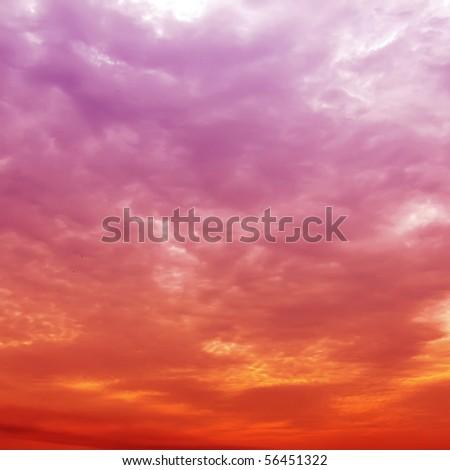 The sunset - stock photo