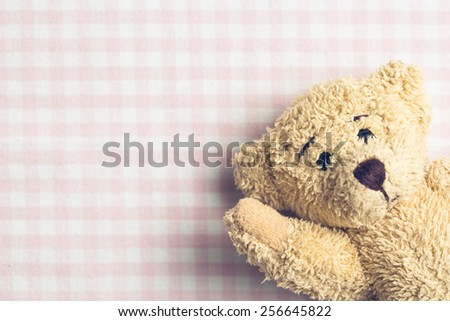 the teddy bear on checkered background - stock photo