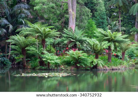 The Terra Nostra Garden on Sao Miguel island, Azores. It is located in the midst of this magnificent water system. - stock photo