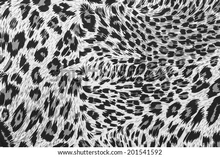 The texture of fabric stripes leopard for background - stock photo