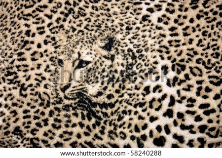 The texture of fabric with the image of a leopard background - stock photo