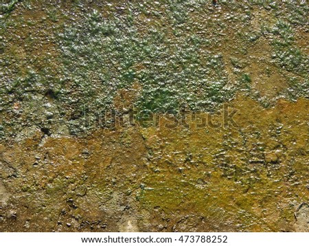 The texture of the concrete and walls