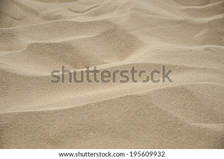 The texture of the sand