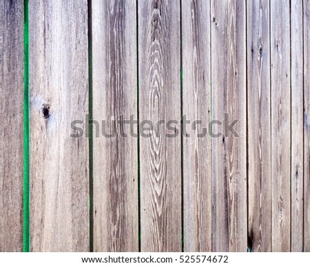 The texture of wood plank