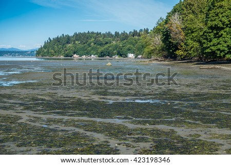 The tide is low at Dash Point State Park in Washington State.
