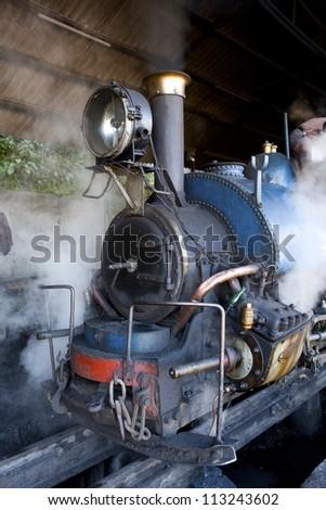 The Toy Train in Darjeeling on the Darjeeling Himalayan Railway Line, West Bengal, India. - stock photo