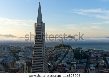 The Transamerica Pyramid in San Francisco early evening - stock photo