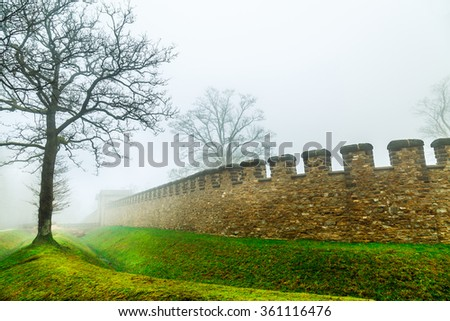 The Tree and Historic Ancient Castle in a Foggy Misty Day - stock photo