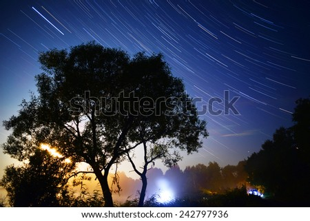 the tree with the sky with traces from the motion of the stars - stock photo