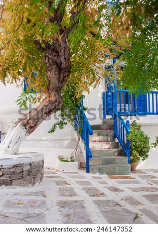 The trees on the narrow streets of the Greek islands. Mykonos. - stock photo
