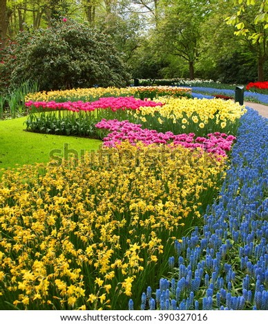 The tulip gardens of De Keukenhof are one of the most beautiful places they will ever see when tourists are visiting the Netherlands