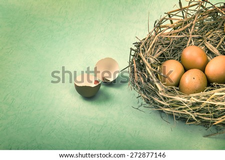 the twigs nest with brown chicken eggs with broken and empty shell egg , retro and vintage color style - stock photo