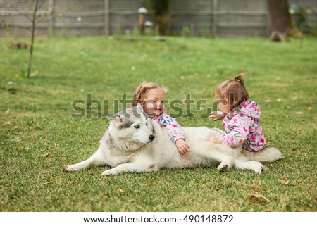The two little baby girls playing with dog against green grass