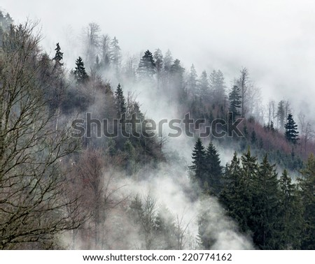 The Tyrolean Alps in a fog - Bavaria, Germany - stock photo