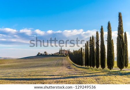 "The ""Val d'Orcia"" (Siena, Tuscany), with its beautiful hills. The Tuscan valley is one of the most beautiful areas of Italy - stock photo"