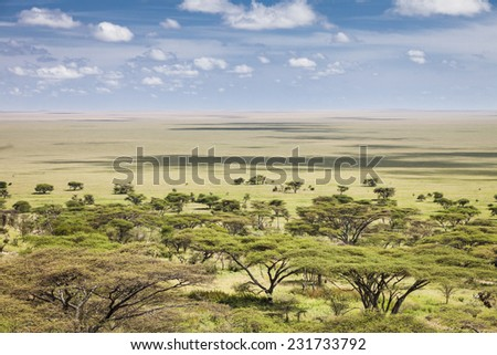 The vast plains of the Serengeti, Tanzania, Africa - stock photo