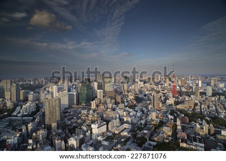 the vast tokyo skyline filled with skyscrapers - stock photo