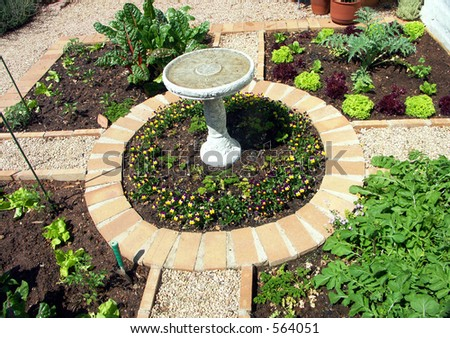 The vegetable or herb garden - stock photo