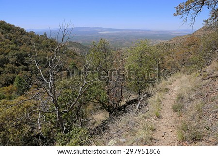 The view from high up in Madera Canyon, in the Santa Rita Mountains, located in Arizona, United States.  - stock photo