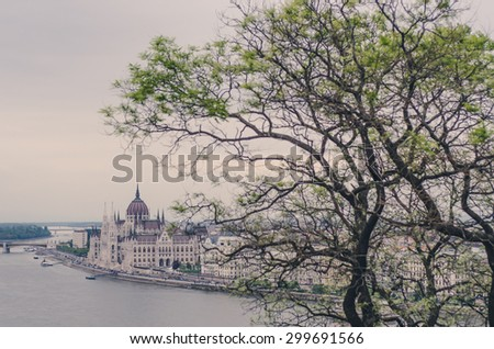 the view of Budapest through a tree - stock photo