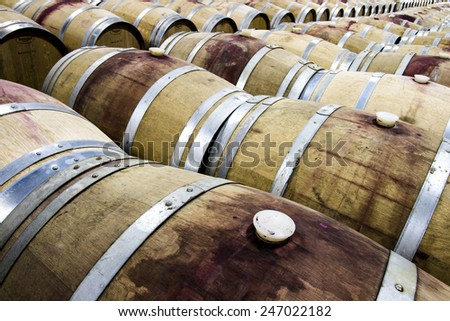 The Vineyard Red Wine Barrel Room - stock photo