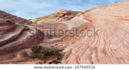 the wave feature, sandstone desert landscape in Valley of Fire State Park in Nevada - stock photo