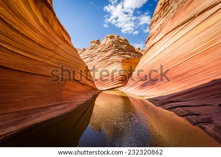 The Wave in Arizona, amazing sandstone rock formation reflecting on water in the rocky desert canyon.