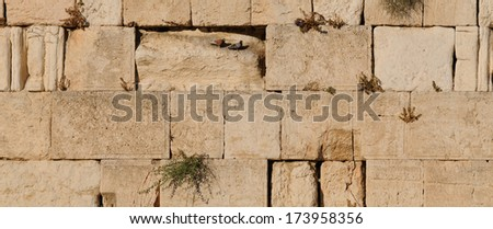 The Western Wall (Kotel) as texture of stones in close-up - stock photo