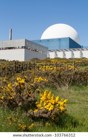 The white dome of Sizewell B nuclear power station, stands out against a blue sky. Bright yellow gorse in foreground. - stock photo