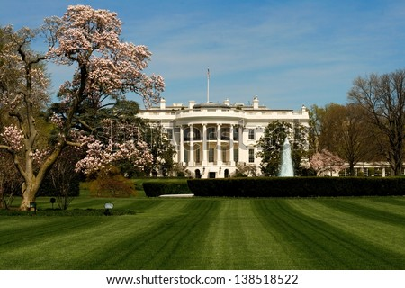 The White House front lawn during the peak of cherry blossom season. - stock photo