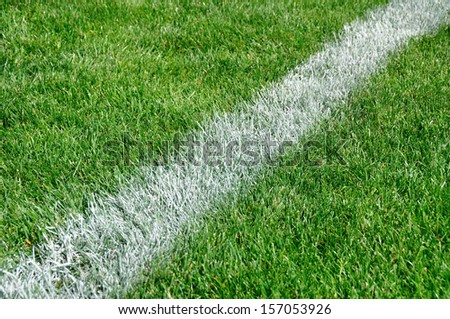The white line on a football field