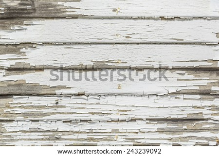 The white peeling paint on the wood exterior of a building. - stock photo