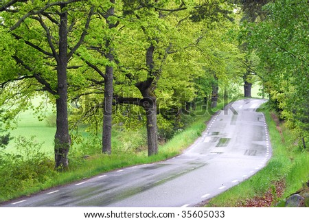 The winding road ahead - stock photo