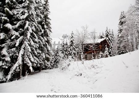 The winter Alpine landscape - stock photo