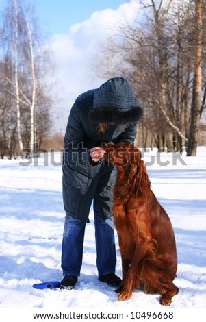 The woman feeds a red irish setter. Winter, a snow. - stock photo