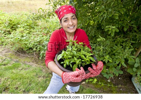 The woman is working in her garden.  She is getting ready to plant more plants in the garden.  Horizontally framed shot. - stock photo