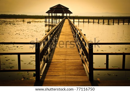 The wood bridge in lotus pond with a beautiful sun light. - stock photo