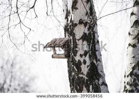 The wooden bird feeder hanging on the willow tree - stock photo