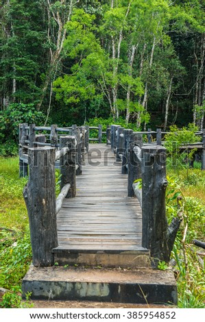 The wooden bridge in the forest - stock photo