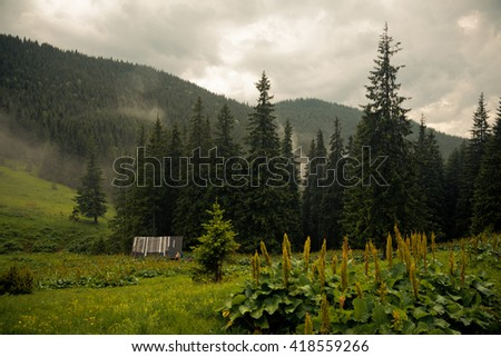 The wooden house in the Carpathians Mountains - stock photo
