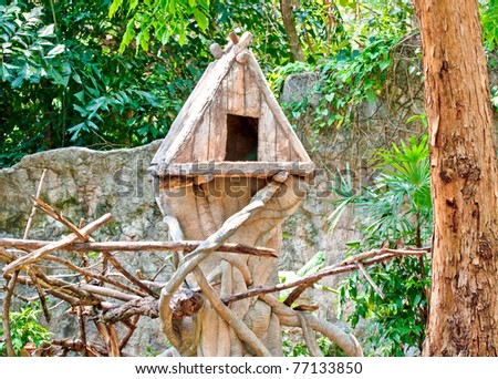 The Wooden house of bird on tree