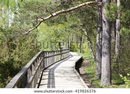 The wooden path in a countryside regional park (Lithuania). - stock photo