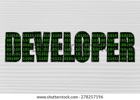 the word Developer with a binary code pattern fill and chalk-like strokes - stock photo