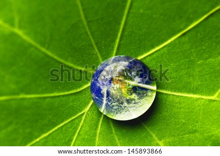 The world in a drop of water on a leaf. Elements of this image furnished by NASA - stock photo