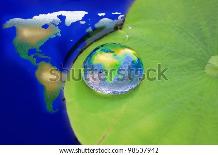 The world in a drop of water on a lotus leaf. - stock photo
