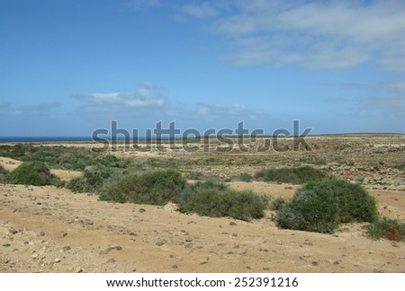 Thedesert near El Puertito de Los Molines on the island Fuerteventura one of the Canary islands in the Atlantic ocean belonging to Spain - stock photo
